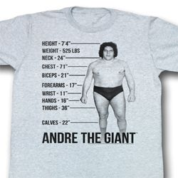 Andre The Giant Shirt Giant Specs Adult Grey Tee T-Shirt