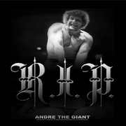 Andre The Giant Shirts