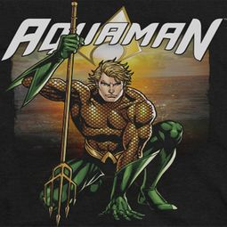 Aquaman Beach Sunset Shirts