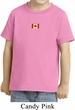 Canada Flag Patch Small Print Toddler T-shirt