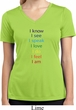 Chakra Words Ladies Moisture Wicking V-neck Shirt