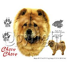 Chow Chow T-shirts