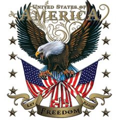 American Eagle Let Freedom Reign Tee