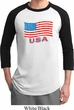 Distressed USA Flag Mens Raglan Shirt