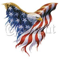 Eagle T-Shirt - American Flag Patriotic USA Symbol Adult Tee