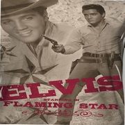 Elvis Presley Flaming Star Sublimation Shirts