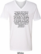 First Amendment Mens V-Neck Shirt