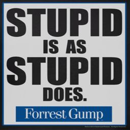 Forrest Gump Stupid Is As Stupid Does Shirts