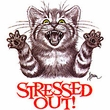 Funny Cat T-shirt - Stressed Out Funny Adult Tee Shirt