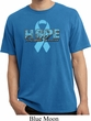 Hope Prostate Cancer Pigment Dyed Shirt