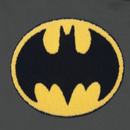 Justice League Embroidered Hoodies