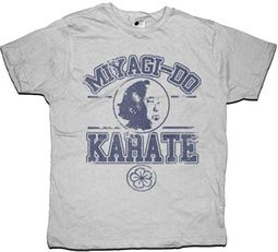 Karate Kid T-Shirt Miyagi Do Karate Adult Gray Tee Shirt