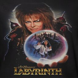 Labyrinth I Have A Gift Shirts