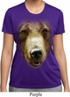 Ladies Shirt Big Grizzly Bear Face Moisture Wicking Tee T-Shirt