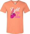 Mens Breast Cancer Shirt Fight For a Cure Tri Blend V-neck Tee T-Shirt