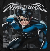 Nightwing DC Comics A Legacy Black Shirts