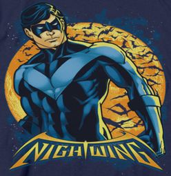 Nightwing DC Comics Moon Shirts
