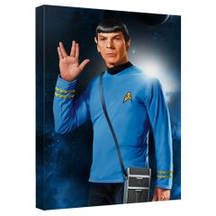 "Star Trek TOS ""Mr Spock"" Canvas Wall Art"