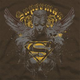 Superman Stand Your Ground Shirts
