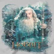 The Hobbit Battle Of The Five Armies Gandalf's Army Shirts