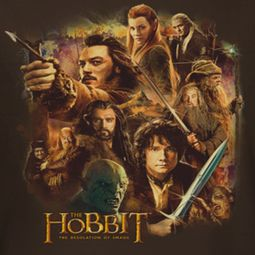 The Hobbit Desolation Of Smaug Middle Earth Group Shirts