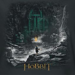 The Hobbit Desolation Of Smaug Second Thoughts Shirts