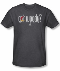 Woody Woodpecker Shirt Got Woody Adult Heather Charcoal Tee T-Shirt