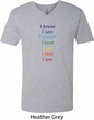 Yoga Chakra Words Mens V-Neck Shirt