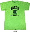Yoga Kale University Lights Mineral Tie Dye Shirt