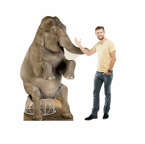 Asian Elephant Standee