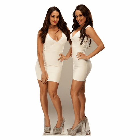 Bella Twins WWE Standee