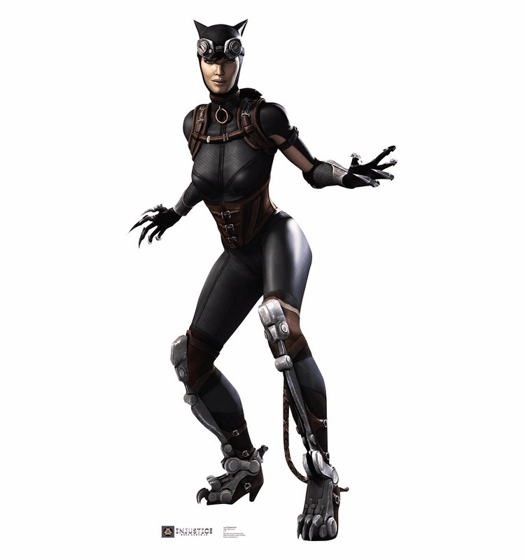 Catwoman Injustice DC Comics Game Standee