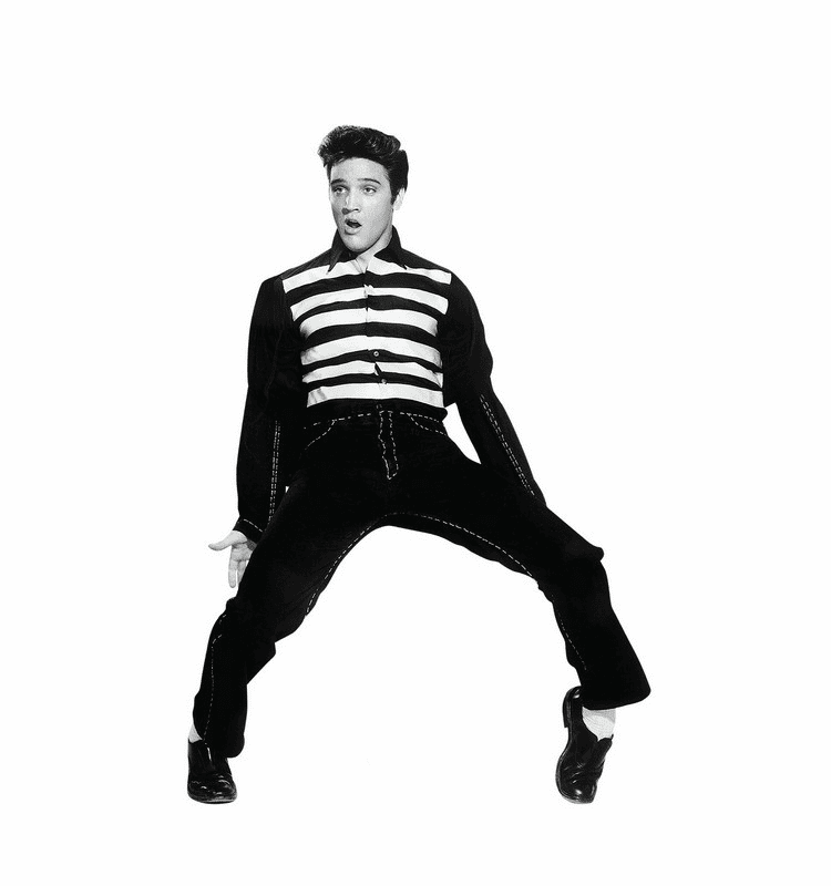 Elvis Collectors Edition Cardboard Cutout