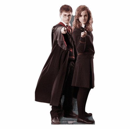 Harry & Hermione Harry Potter Standee
