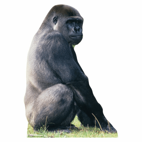 Life Size Gorilla Standee