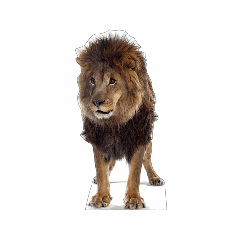 Life Size Lion Standee with Sounds