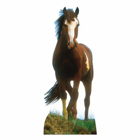 Life Size Mustang Horse Standee