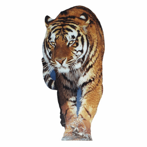 Life Size Tiger Standee