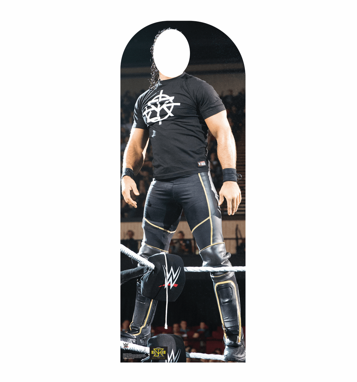 Seth Rollins Stand In