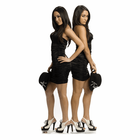 The Bella Twins WWE Standee