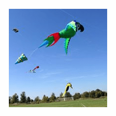 Algonquin  2nd annual kite festival September 12th 2020