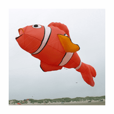 Clownfish 30 ft