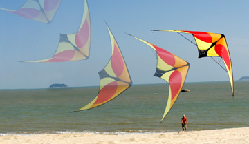 Stunt Kites    Beginner To Advanced