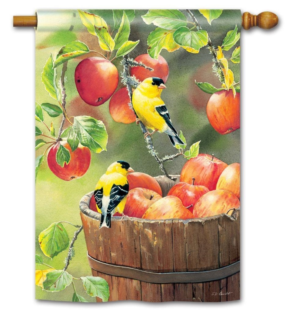 BreezeArt Outdoor Flag - Apple Harvest - 28in x 40in