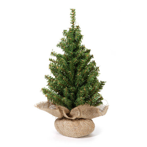 Canadian Fir Twig Tree - Table Top - Burlap Base - 18in