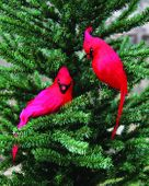 Christmas Ornament - Red Cardinal Clip On - 8 Inch