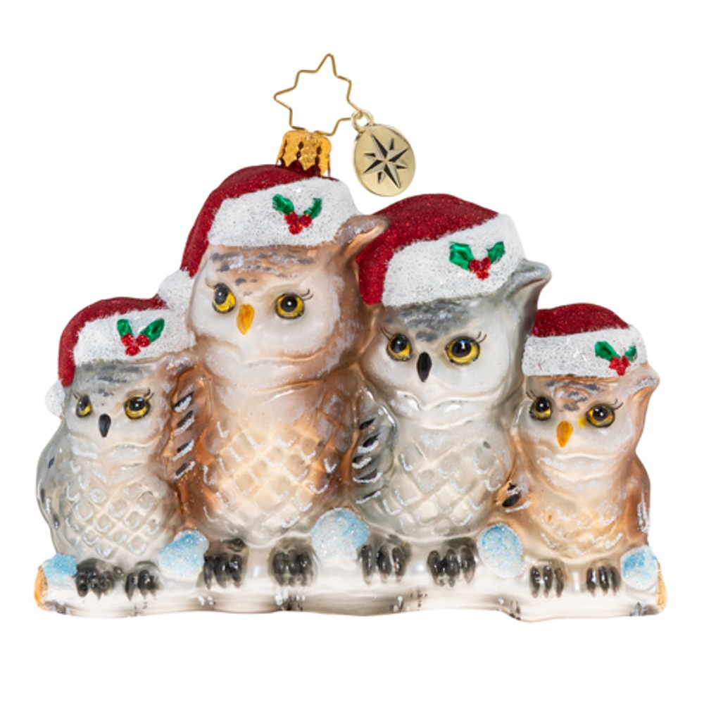 Christopher Radko Glass Ornament - It's Owl In The Family 2020