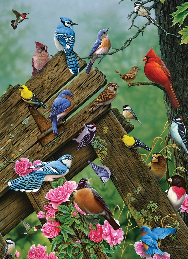 Cobble Hill Jigsaw Puzzle - 1000pcs - Birds Of The Forest