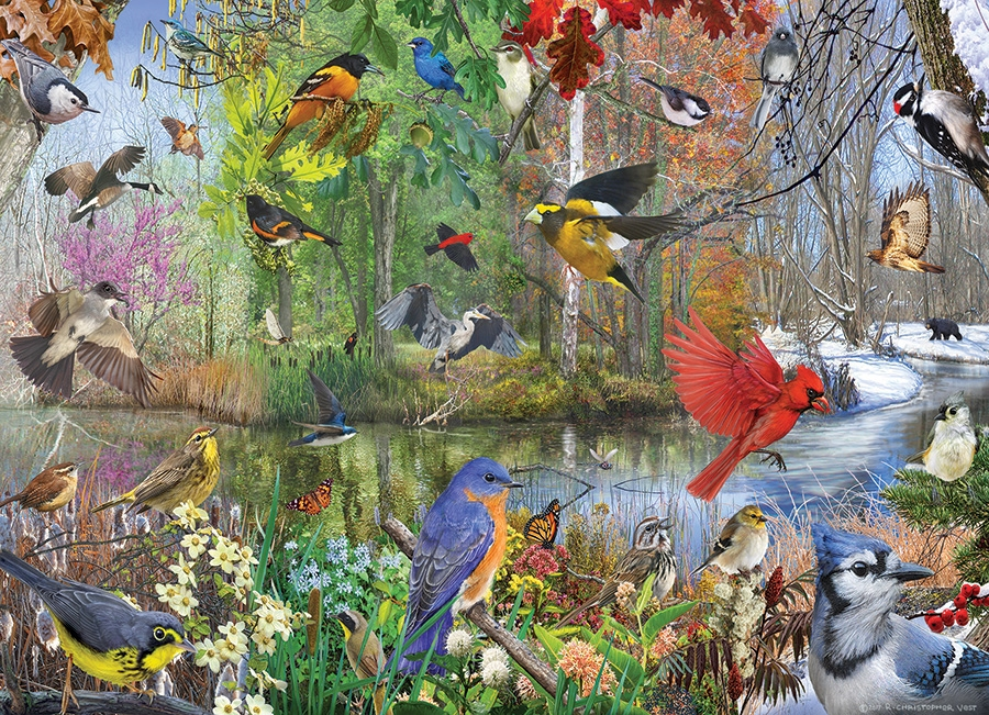Cobble Hill Jigsaw Puzzle - 1000pcs - Birds Of The Season
