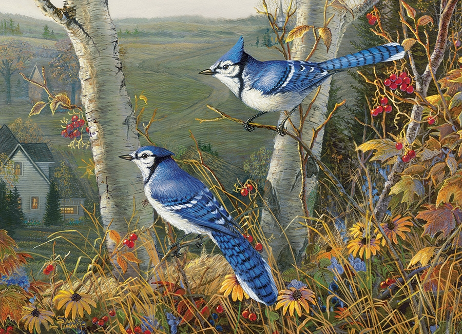 Cobble Hill Jigsaw Puzzle - 1000pcs - Blue Jays